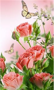Flowers Live Wallpaper image