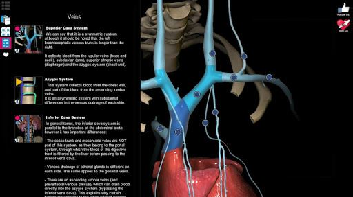 Anatomy Learning - 3D Atlas image