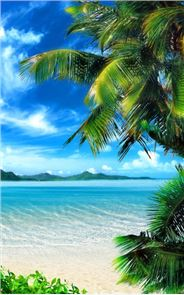 Tropical Beach Live Wallpaper image