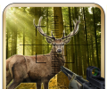 Deer jungle hunting